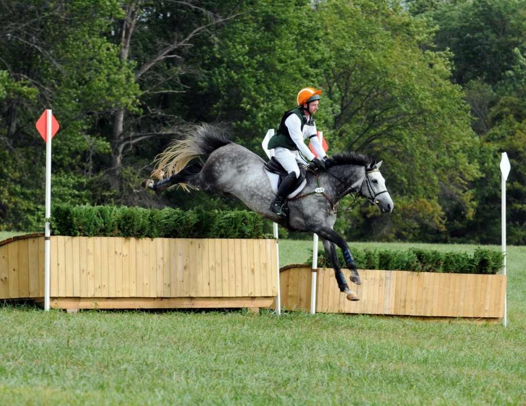 Royal Alyance – COMPETING WITH SHANNON ELLIS AT MORNINGSIDE EVENTING