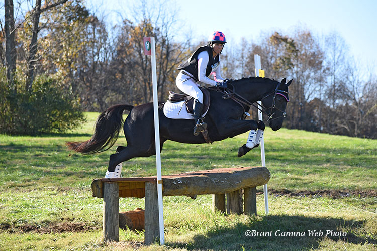 Dans La Nuit WE – COMPETING WITH CARIN BROWN AT PICTURE PERFECT EQUINE