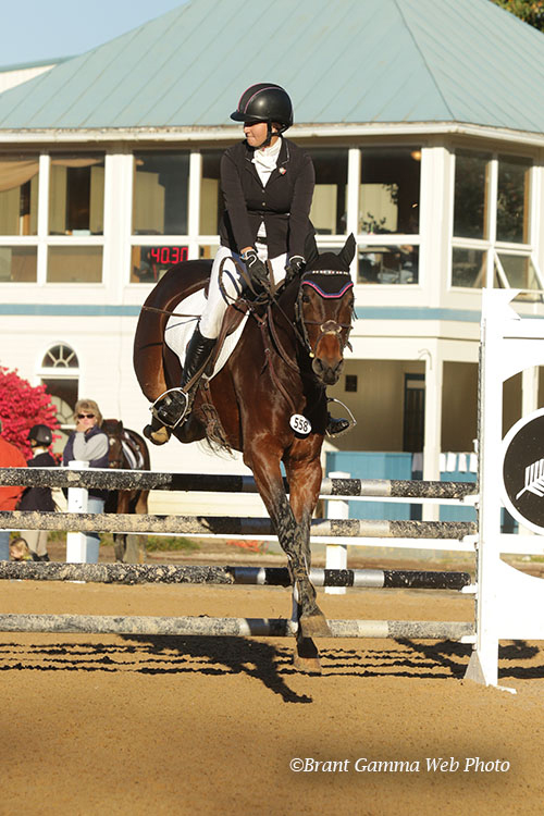 Riptide – OWNED AND COMPETED BY CARIN BROWN AT PICTURE PERFECT EQUINE