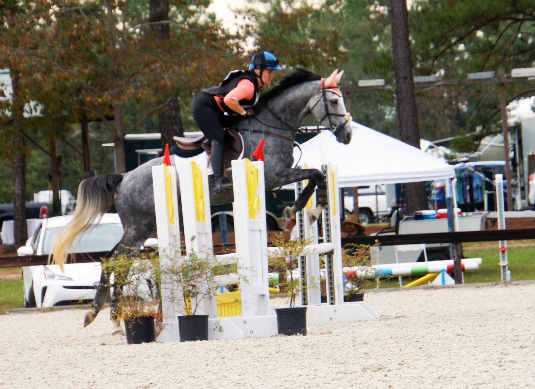 Royalty Happens WE – OWNED & COMPETED BY HUXLEY GREER EQUESTRIAN